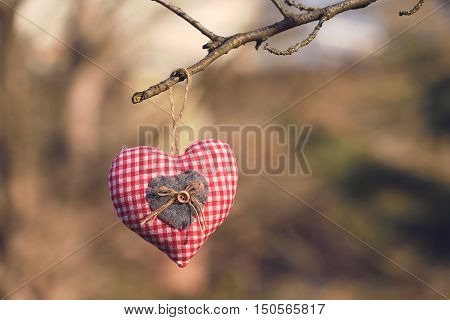 Closeup Photo Of A Checkered Hearth Shape