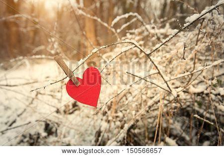 Heart Shape On A Snowy Branch