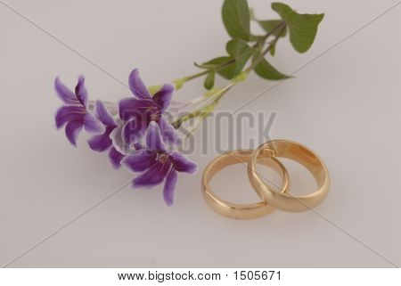 Wedding Invitation Of Two Rings Denoting Union Of Two Hearts