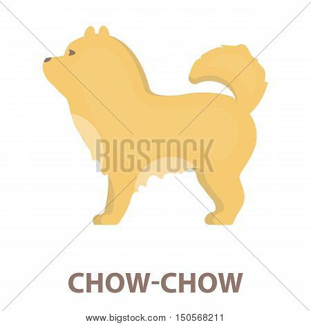 Chow-chow rastr illustration icon in cartoon design