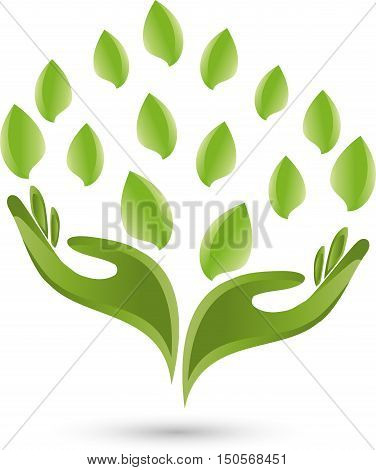Two hands and leaves in green, medical practitioner logo