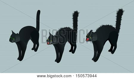 Isometric Black Cat. Set calm cat, meowing, hissing vector illustration