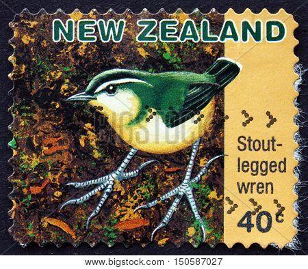 NEW ZEALAND - CIRCA 1996: a stamp printed in New Zealand shows Stout-legged Wren Pachyplichas Yaldwyni Extinct Species circa 1996