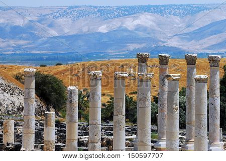 Photo of Pillars in Ancient Beit Shean Israel. poster