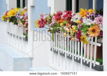 Photograph of colorful flowers on a windowsill
