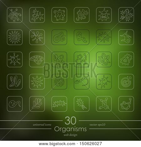 organisms modern icons for mobile interface on blurred background