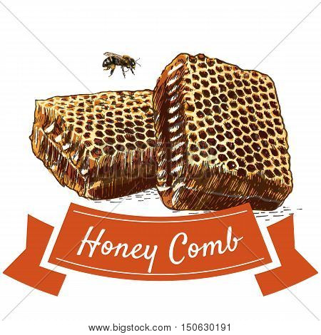 Honey comb colorful illustration. Vector colorful illustration of honey comb.