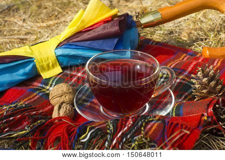 transparent cup of tea on bright red checkered scarf and versicolor umbrella