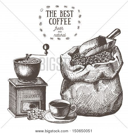 Coffee set with coffee grinder mill beans bag of coffee scoop coffee cup. Hand drawn vector illustration in sketch style. Ink drawn.