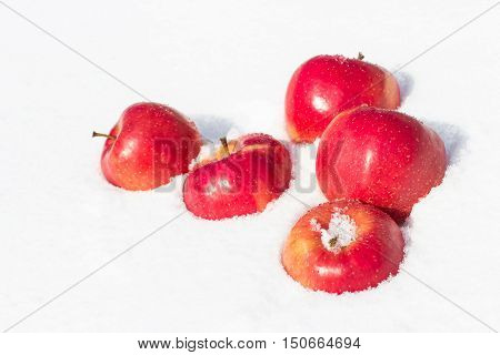 Bright red apples lying on white sparkling snow