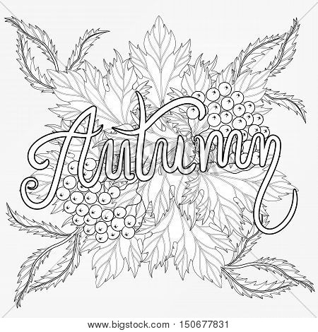 Zentangle stylized Autumn typographic background with maple leaves, Rowan berry. Freehand sketch for adult anti stress coloring page with doodle elements. Artistic vector illustration for  t-shirt print