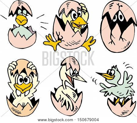 Set Of Cute Nestlings Hatching Out The Eggs