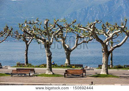 Garda lake with promenade in Torri del Benaco Italy