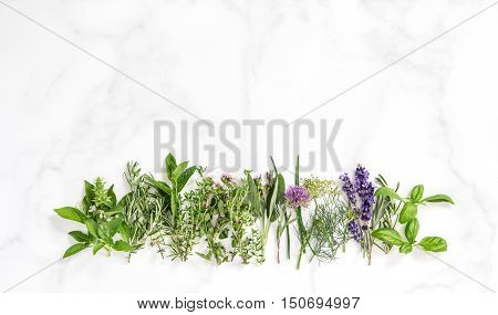 Fresh herbs on marble stone background. Basil rosemary sage thyme mint dill savory chive lavender