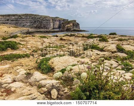 Dwejra Fungus Rock Gozo