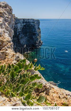 Cliffs On Comino Island
