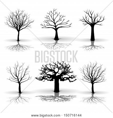 Illustration set of tree on a white background.