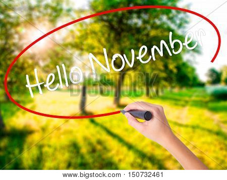 Woman Hand Writing Hello November With A Marker Over Transparent Board