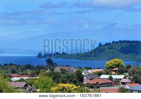 Landscape view of houses near Lake Taupo in the North Island of New Zealand