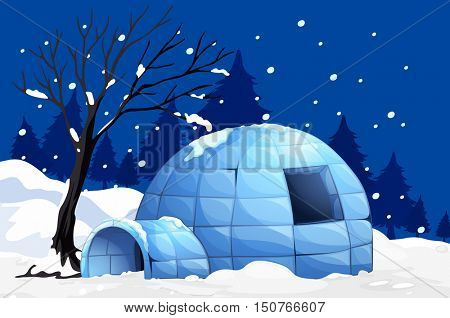 Nature scene with igloo on snowy night illustration