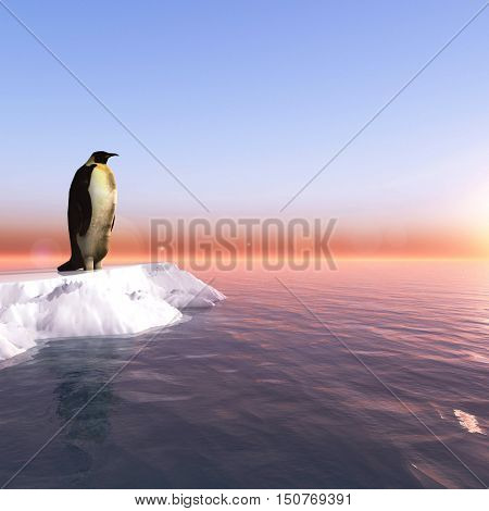 Antarctic penguin on ice - 3D rendering