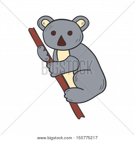 Vector Cartoon Hand Drawn Koala