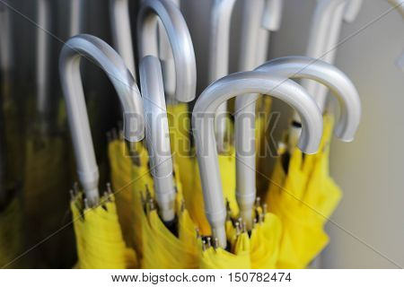 yellow umbrellas with silver handles top view horizontal photo