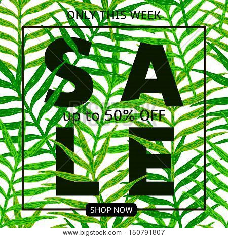 Sale - black text on the seamless pattern fron green leaves. Template for tag card poster banner