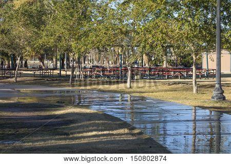 Wet walkway among shady green trees in Phoenix downtown Encanto park Arizona