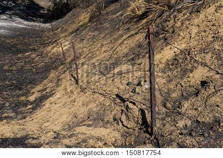 Barbed Wire Fence After Fire