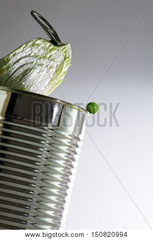 Green pea leaves the can concept for fresh food instead of canned goods closeup with selected focus narrow depth of field