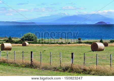 Pacific-nz-new-zealand-north-island-taupou-lake