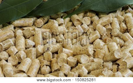Wood pellets . Biofuels. The cat litter. Bio fuels