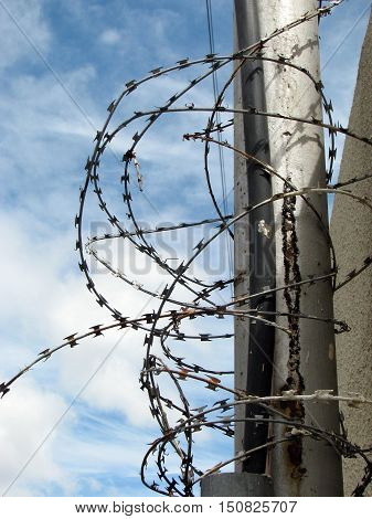 Security Fence, Razor Sharp Barbed Wire 070