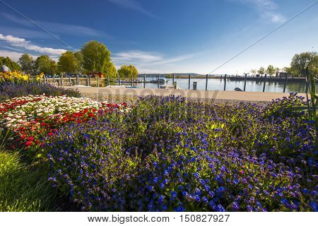 Flowers along embarkment in the Kreuzlingen city center near Konstanz city with the lake Constance and boats in the background Switzerland.