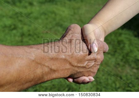 Handshake farmers on a background of green grass . Male and female hands, handshake. The meeting of two people on fresh air outside the city.