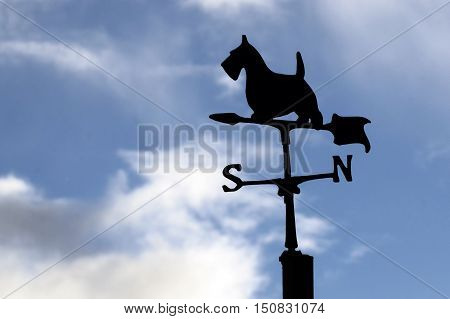 Weather vane in shape of a dog silhouetted against a stormy sky.