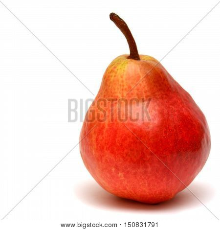 Red pear isolated on white background. Fruit.