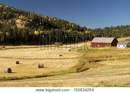 Autumn at a Colorado Ranch near Colorado Springs Colorado