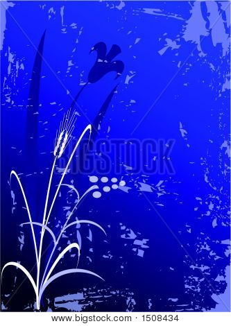 Blue Back1.Eps