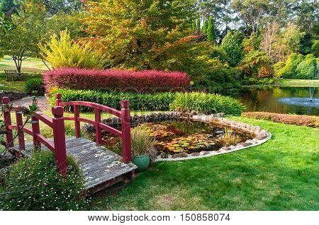 Autumn Park. Bisley Garden