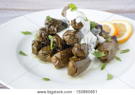 Yaprak Sarma Dolma Turkish Cuisine