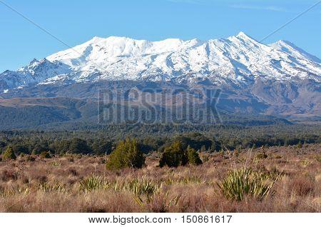 Landscape Of Mount Ruapehu In Tongariro National Park