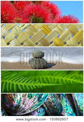Iconic New Zealand Nature Background Photos