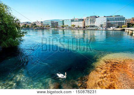 Geneva, Switzerland - June 23, 2016: Clean river with white swan in the center of Geneva city in Switzerland