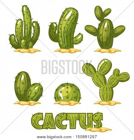 Mexican Cactus Set, funny set of comic mexican desert cactus plants in vector