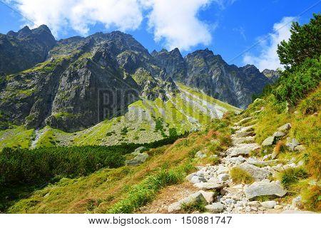 Beautiful summer mountain landscape in Western Carpathians, Hiking trail in Mengusovska Valley in Vysoke Tatry (High Tatras), Slovakia.