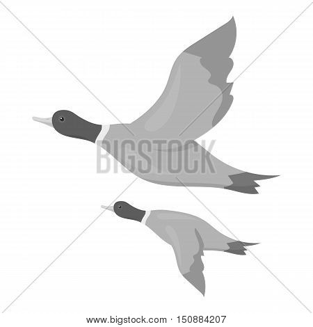 Ducks icon in monochrome style isolated on white background. Hunting symbol vector illustration.
