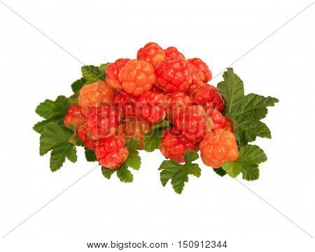 A hill of ripe berry cloudberry close up isolated on white background