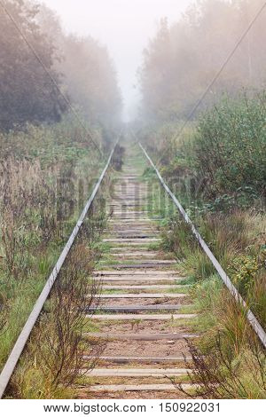 Empty Railway Goes In Foggy Forest